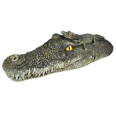 PoolMaster Floating Crocodile Head