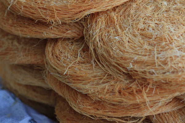 Foil Fresh Pheni (Fried Vermicelli)