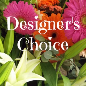 Designer's Choice Design