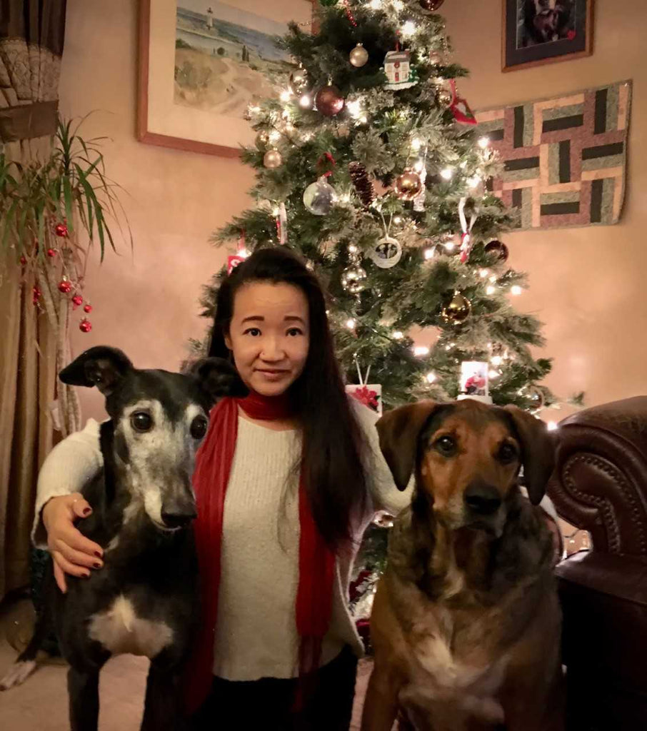 Happy Holidays from Hearth Hounds!