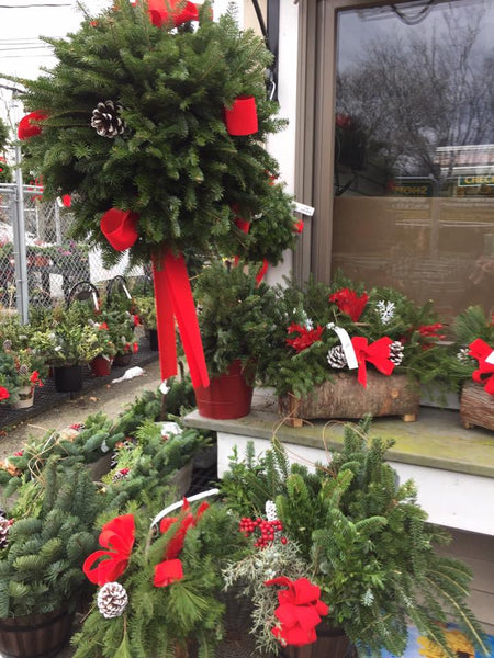 Marblehead Garden Center in Marblehead Ma carries Hearth Hounds dog Christmas stockings!