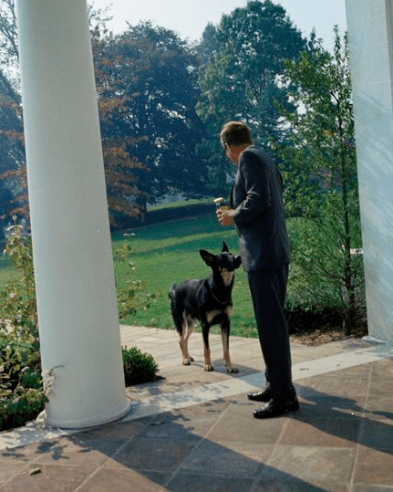 JFK with his German Shepherd, Clipper
