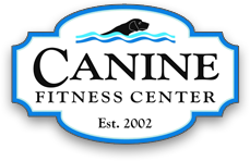 Canine Fitness Center carries Hearth Hounds dog Christmas stockings
