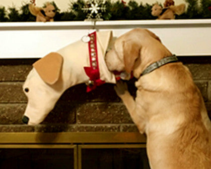 This Yellow Lab shaped Christmas dog stocking is perfect for stuffing toys and treats into to spoil your fur baby for Christmas, or whatever holiday you celebrate!