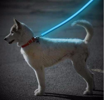 GloLove Safety Dog Leash