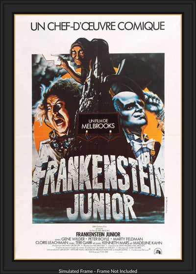 Movie Poster - Young Frankenstein (1974)  - Original Film Art - Vintage Movie Posters