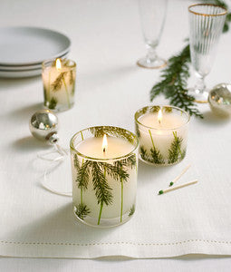 Thymes Frasier Fir Candle Poured Pine Needle Design