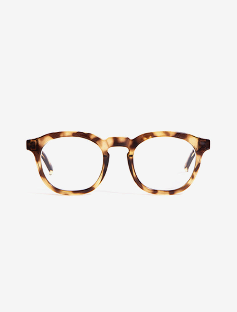 giftguide_Honey Tortoise