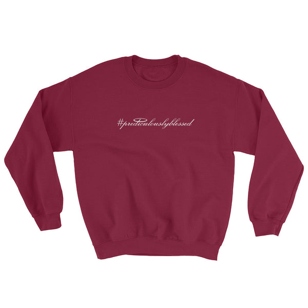 #PrediculouslyBlessed Sweatshirt