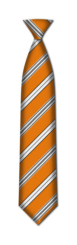 FRANKLIN SCHOOL REGULAR TIE