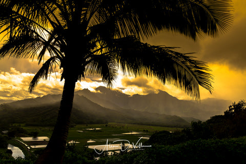 Hanalei Valley Glow ~ Fine Art Prints