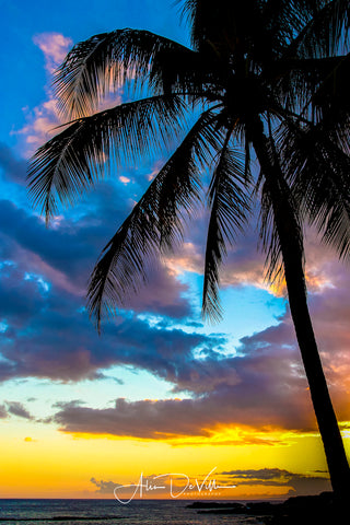 Tropical Breeze ~ Fine Art Prints