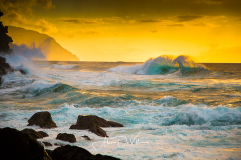 Golden Splash ~ Fine Art Prints