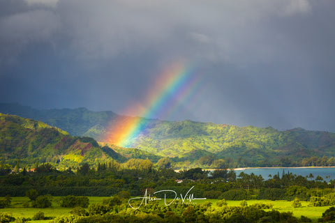 Rainbow Vibrance ~ Fine Art Prints