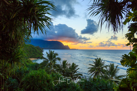 Hideaway Jungle View ~ Fine Art Prints