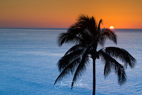 Sunset in the Tropics ~ Fine Art Prints
