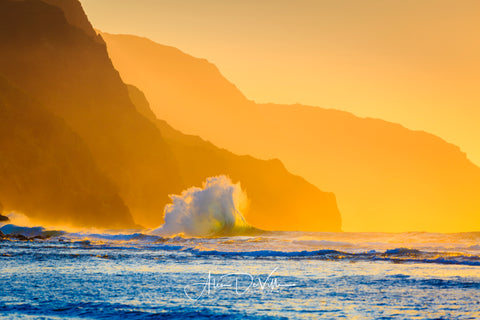 Splash of Gold ~ Fine Art Prints
