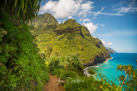Trail to Paradise  ~ Fine Art Prints