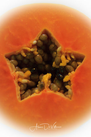 You're a Star, Papaya Fruit II ~ Fine Art Prints
