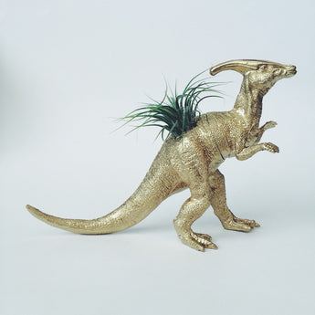 Large Gold Parasaurolophus Dinosaur Planter + Air Plant