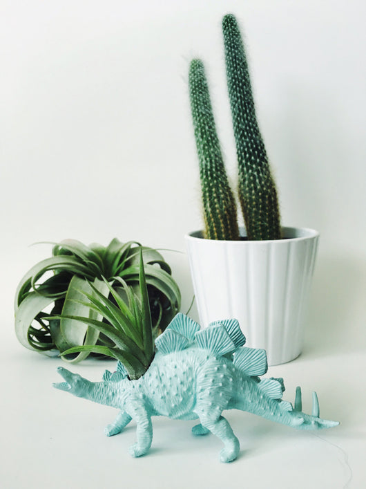 Small Pastel Blue Stegosaurus Dinosaur Planter Air Plant