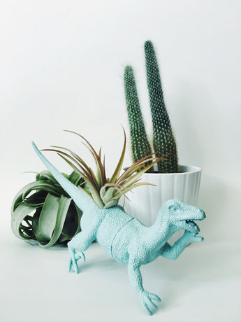 Large Pastel Blue Raptor Dinosaur Planter