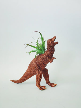 Large Copper T-Rex Dinosaur Planter with Air Plant