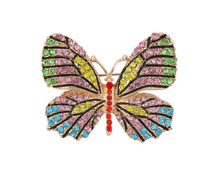 Splashy Splendorous Butterfly Pin