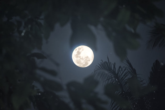 Full Moon Flux: The Truth and Ease Behind a Super Moon