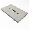 Gray Cast Stone Insulated - 2 Toggle Wallplate
