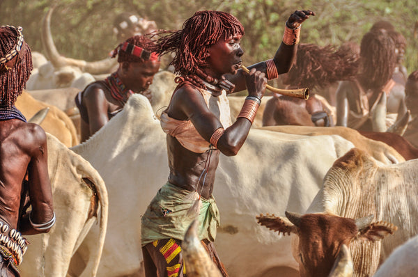 Bull Jumping Frenzy - Omo Valley - Hamar Tribe