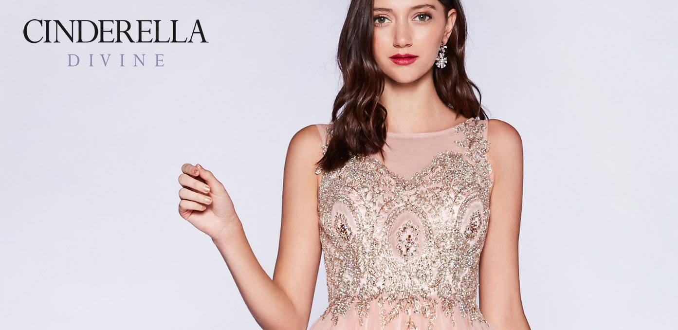 Cinderella Divine Dress Collection