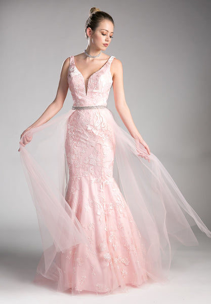 Blush V-Back Prom Gown with Tulle Overlay