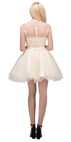 Starbox USA 17306 Illusion Appliqued Bodice Short Homecoming Dress Champagne Back View