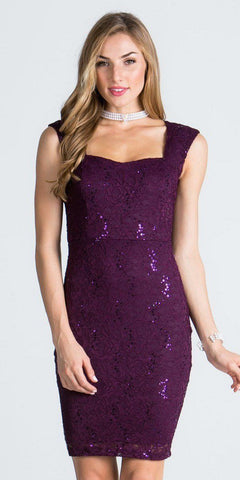 Lace Eggplant Fitted Short Party Dress Sleeveless