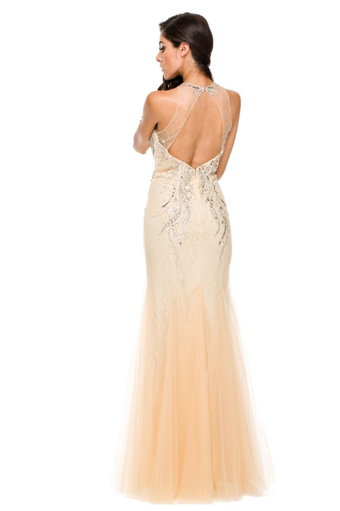 Long Formal Fish Tail Gown Champagne Mesh/Tulle Rhinestones Back View