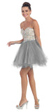 Short Poofy Ball Gown Silver Strapless Tulle Skirt A Line