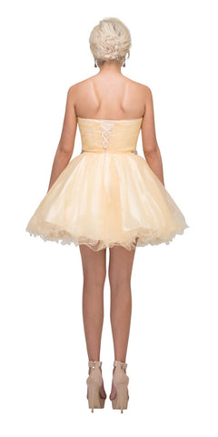 Starbox USA 6059 Poofy Short Homecoming Dress Champagne Tulle Strapless Rhinestones Back View