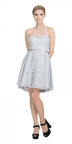 Starbox USA 6147 Sweetheart Neck Lace Overlay Silver A-line Short Damas Dress Strapless Back View