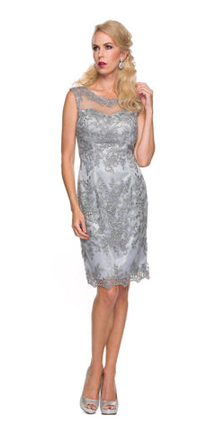 Bateau Neck Meshed Yoke Knee Length Silver Sheath Dress Back