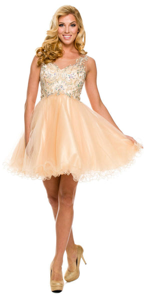 Poofy A Line Light Gold Short Homecoming Dress Tulle Embroidery