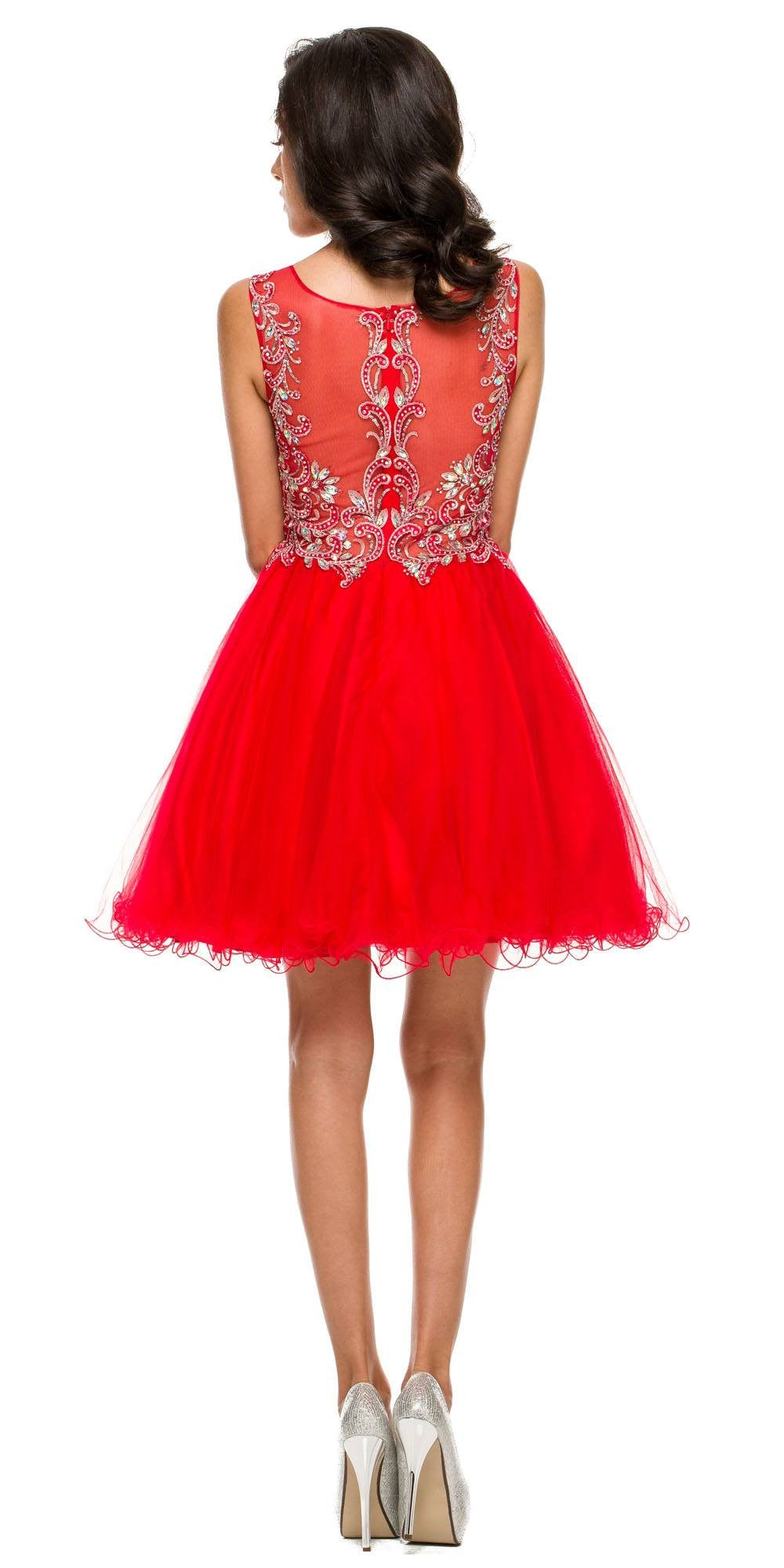 Poofy A Line Red Short Homecoming Dress Tulle Embroidery Back