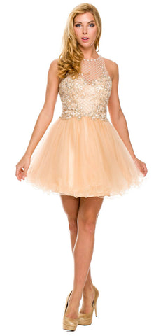 Short Poofy Formal Gown Champagne Tulle Skirt A Line High Neck