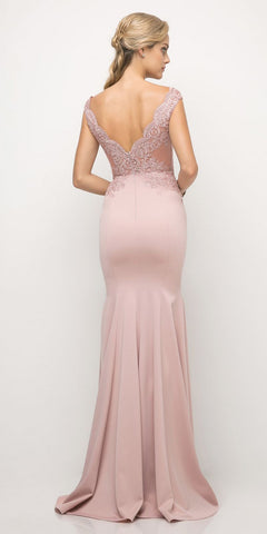 Cinderella Divine 770 Dusty Rose V-Neckline Lace Bodice Fit and Flare Evening Gown Back View