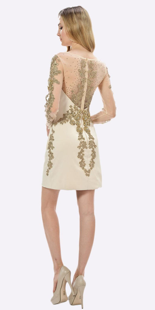 Champagne Sheer Embellished Sleeves Short Illusion Party Dress Back View