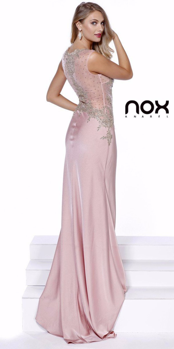 Rose Scoop Neck Embellished Fit and Flare Prom Gown Long Back View