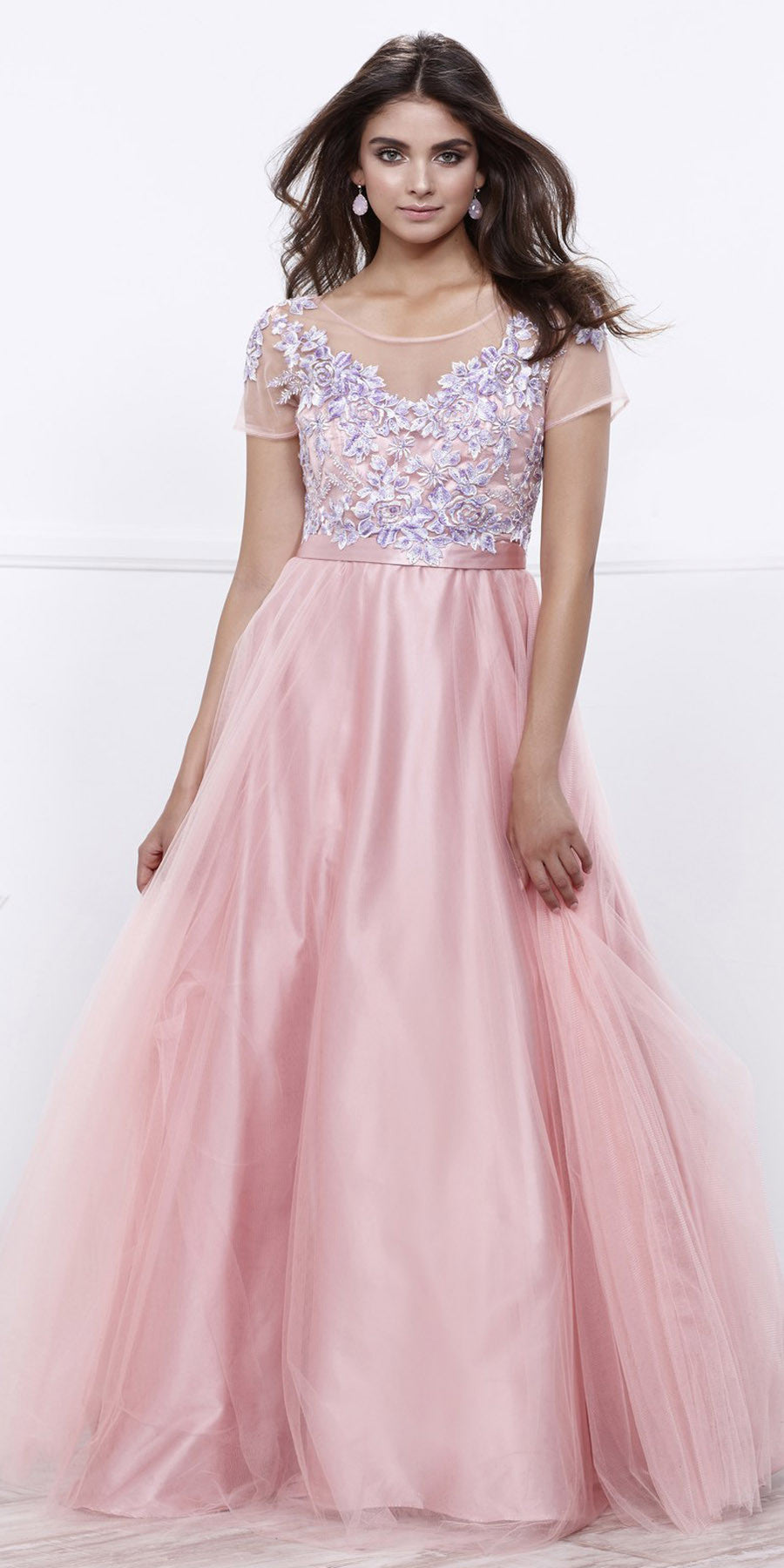 Scoop Neck Short Sleeves Embroidered Bodice Bashful Pink Ball Gown