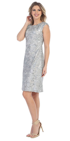 Knee Length Cap Sleeve Sequin Embellished Dress Silver
