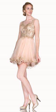 Cinderella Divine 8932 Bateau Neck Champagne Embroidered Homecoming Short Dress Tulle