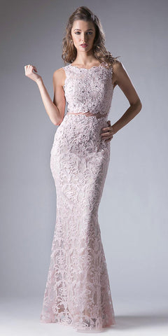 Lace Applique Mermaid Long Formal Dress Sleeveless Blush